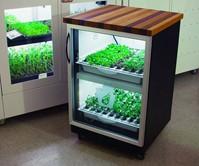 The Indoor Home Garden