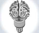 Insight - The Brain Bulb