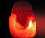 Himalayan Salt Skull Lamp