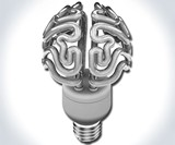 Insight - The Brain Bulb