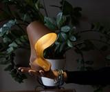 Ohmie Lamp - Lamp Made from Orange Peels