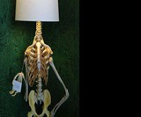 Philippe the Skeleton Lamp