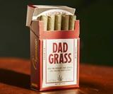 Dad Stash Hemp CBD Pre Rolls in Screw Decoy Box
