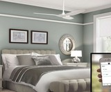 Indoor/Outdoor Wi-Fi Enabled Ceiling Fan