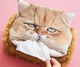 Kleenex-Munching Cat Tissue Box Cover
