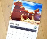 Nature's D*ck Pics 2018 Wall Calendar