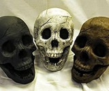 Skull Gas Fireplace Logs