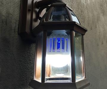 Zapplight Bulb & Bug Zapper
