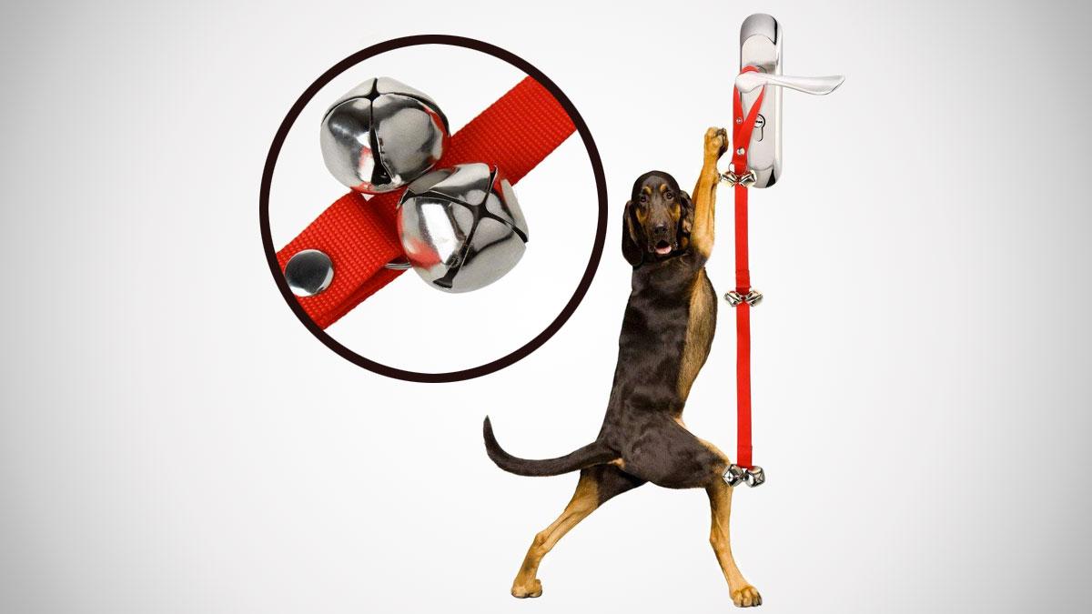 Dog Doorbells For Housebreaking Your Dog Dudeiwantthat