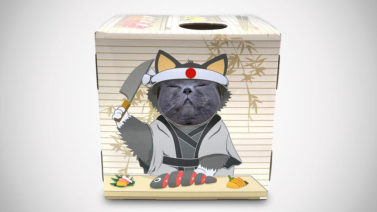 DoyenCat Sushi Chef FunBox with Scratching Board
