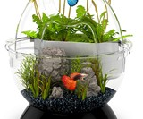 BioBubble Wonder Bubble & Tunnel Fish Tank