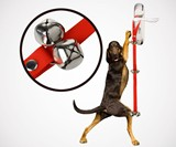 Dog Doorbells for Housebreaking Your Dog