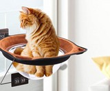 Window-Mounted Suction Cup Cat Saucer