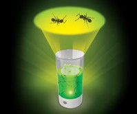 LED-Lit Ant Farm Revolution
