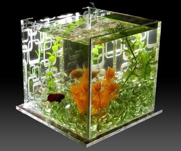 Lumatank Edge Lit Fish Tank Dudeiwantthat Com