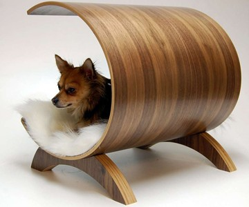 Modern Dog Lounge