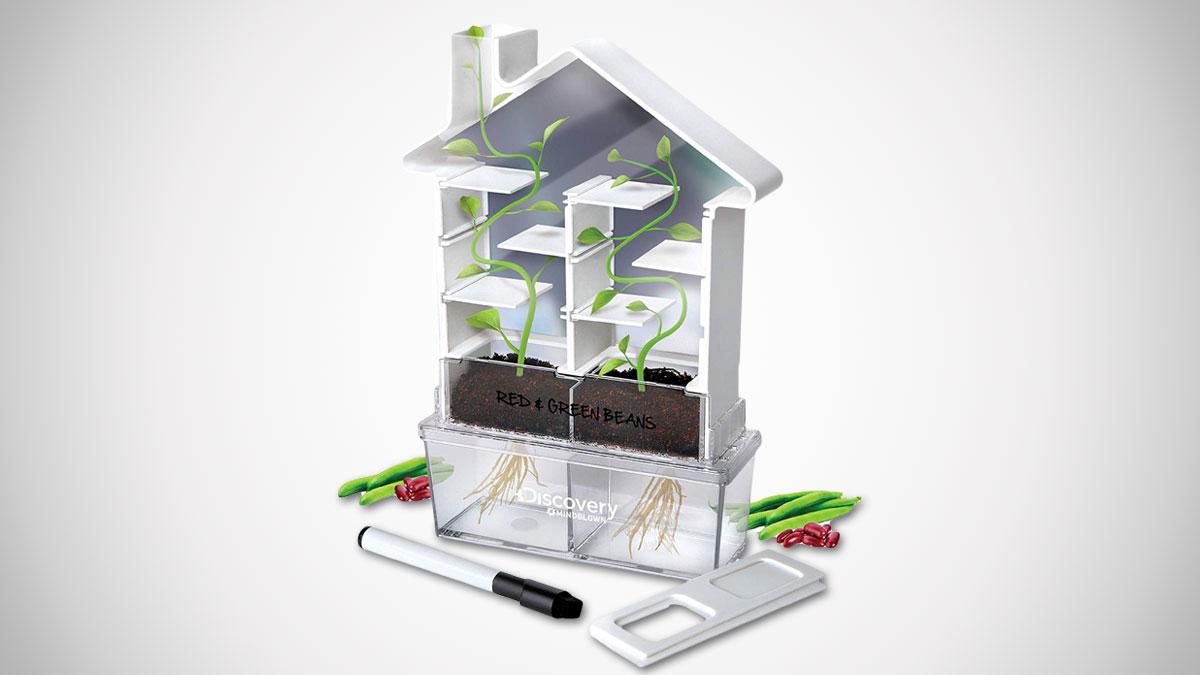 Maze Planter DIY Build & Grow Botany Kit