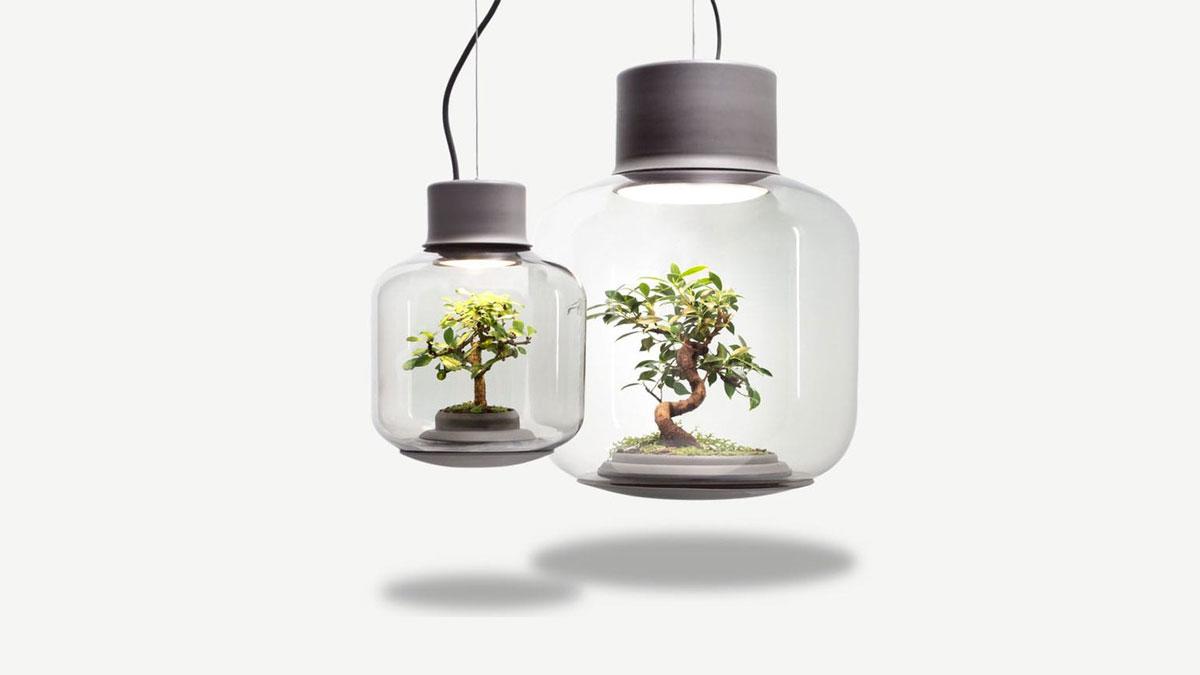 Mygdal Plantlight Self-Supporting Ecosystem