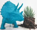 Triceratops Planter - Front View