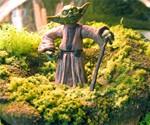 Yoda Terrarium - Closeup View