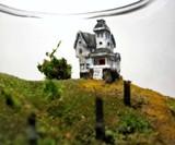 Beetlejuice Terrarium Closeup