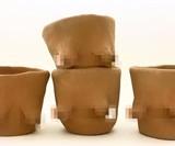 Boob Pots (NSFW)