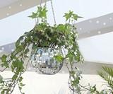 Hanging Disco Ball Planter