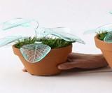 Lamp Plants