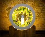 OGarden Rotating Indoor Plant Wheel