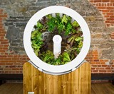 OGarden Rotating Indoor Plant Wheel
