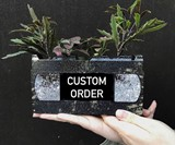 Recycled VHS Tape Planters