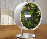 Rotofarm Compact Anti-Gravity Kitchen Farm