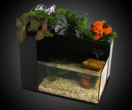 Fin to Flower Aquaponics System