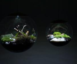 Globe Terrarium Lamps