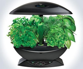 Miracle-Gro 7-Pod Indoor AeroGarden