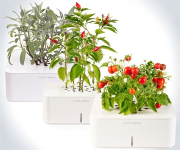 Click & Grow SmartPot Plants
