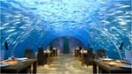 The Underwater Suite-171