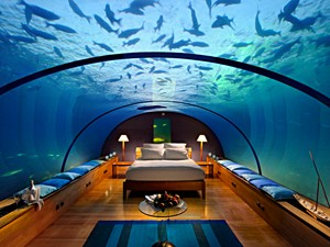 The Underwater Suite