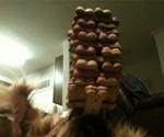 Dog Balancing Treats