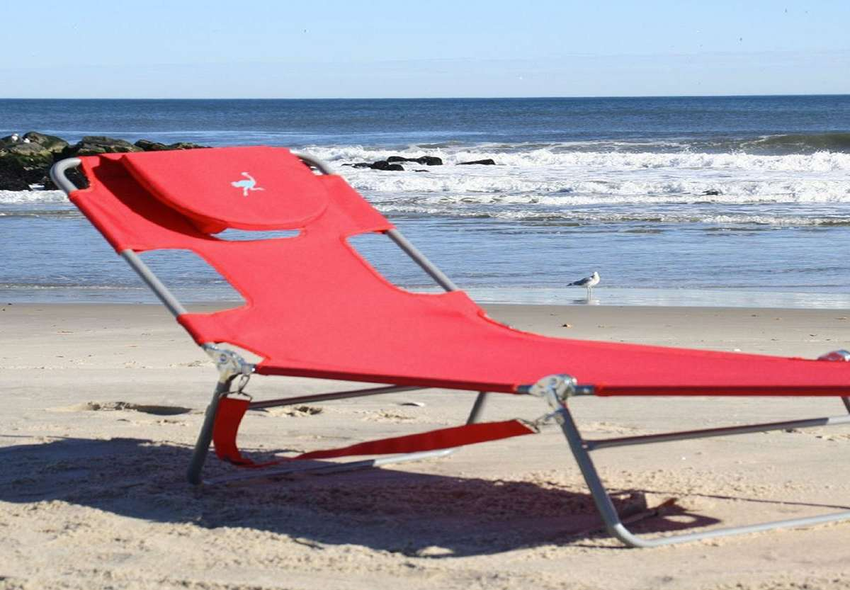 Ostrich chaise lounge for Beach chaise lounger