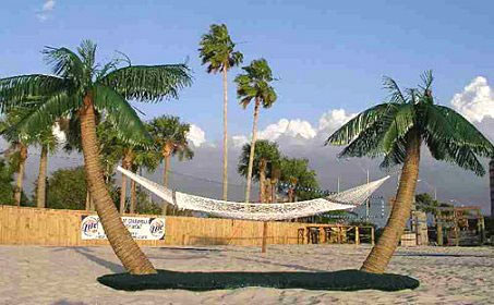 Palm Island Hammock Stand Dudeiwantthat Com