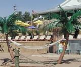 Palm Island Hammock Stand