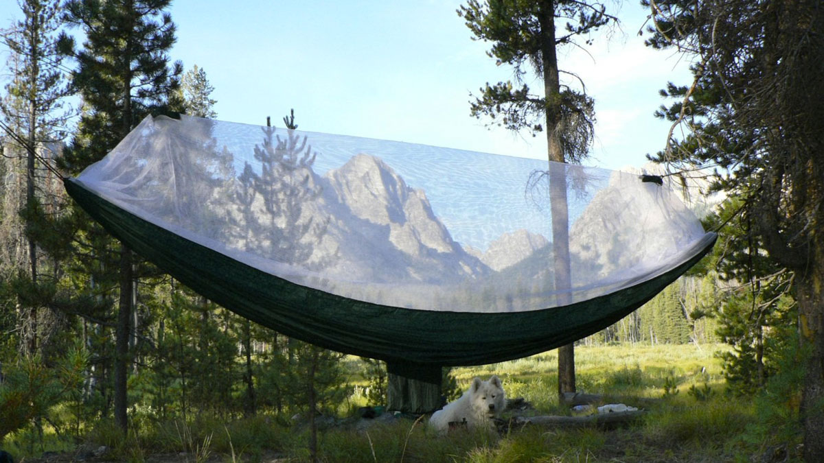 Portable Bug Free Hammock