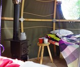 The Tree Tent Interior