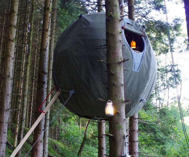 The Tree Tent