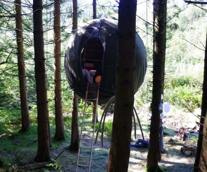 The Tree Tent Dudeiwantthat Com