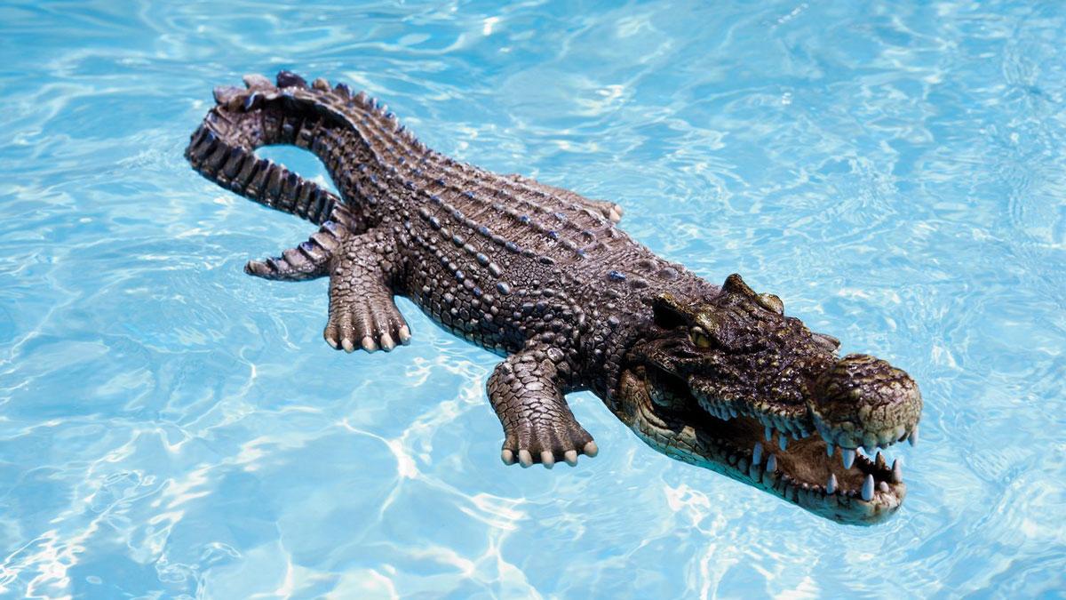 Floating Crocodile Pool & Pond Decoy