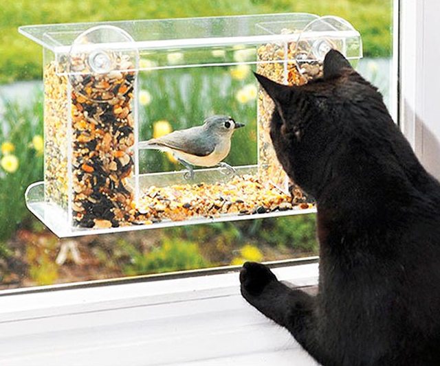 One-Way-Mirror Birdfeeder