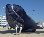 Life-Size Blue Whale Kite at Takeoff