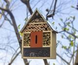 Ladybug, Bee & Butterfly House